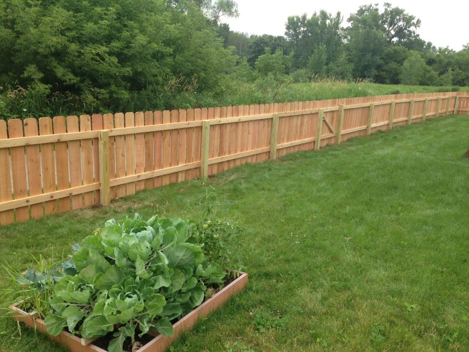 Wood Fence Garden